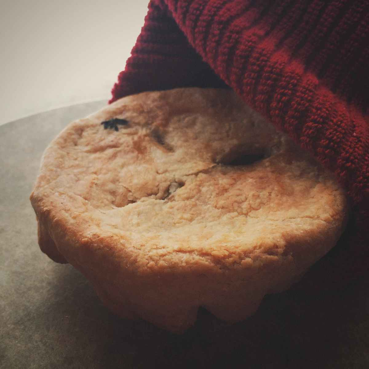 Genre Scribes: Friday Fiction Writing Challenge #31 —Cookie